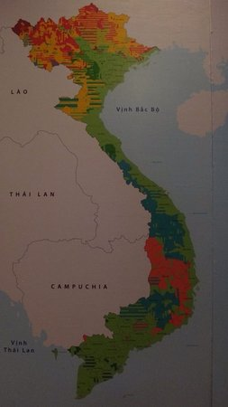 photo0 Picture of Vietnam Museum of Ethnology Hanoi TripAdvisor