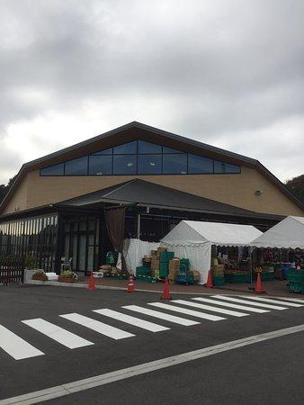 Michi no Eki Tsu Kawage