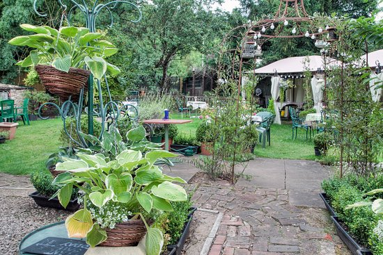 Whitchurch, UK: The Potting Shed Garden