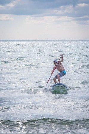 Vellinge, Suecia: Stand Up paddle  uthyrning