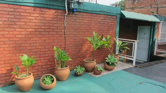 Iguassu Flower Garden: IMG_0023_large.jpg
