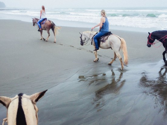 Surf With Amigas- Women's Surf and Yoga Retreat: Horseback ride on the beach