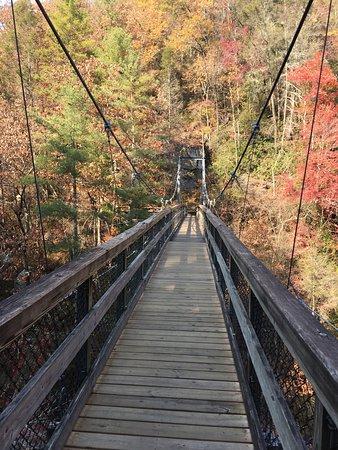 Tallulah Gorge State Park : photo6.jpg