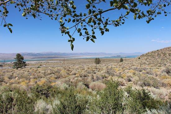 Lee Vining, Californië: Utsikt från parkeringen, mycket vackert.