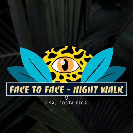‪Face to Face - Night Walk‬