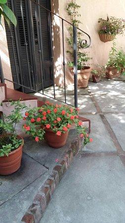 Posada de la Flor: IMG-20161114-WA0006_large.jpg
