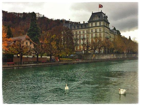 Thun, Suiza: photo1.jpg