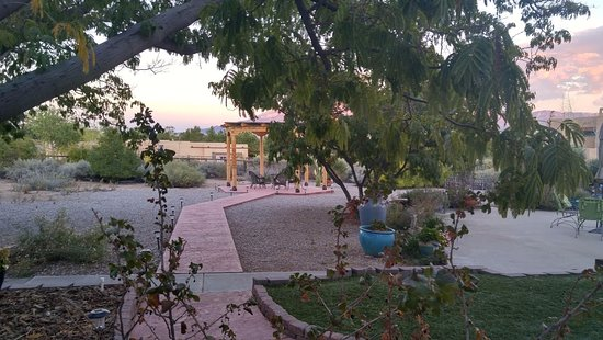 Corrales, NM: back yard