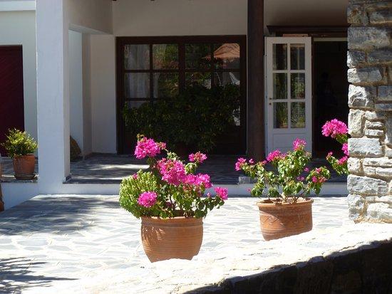 Doryssa Seaside Resort Bild