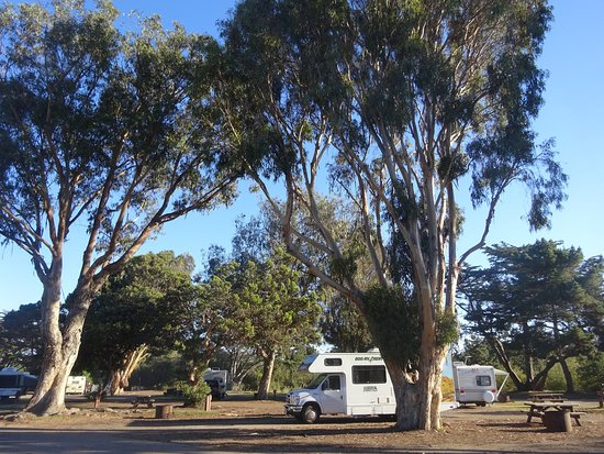 Pismo State Beach Oceano Campground Updated 2017 Reviews