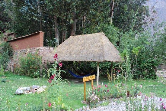 Apu Lodge: garden