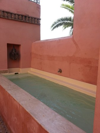 Riad Tayba: Small pool on top deck, very pretty.