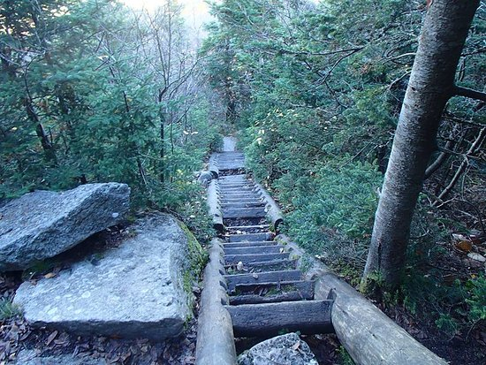 Catskill, NY: Steps on Slide Mountain