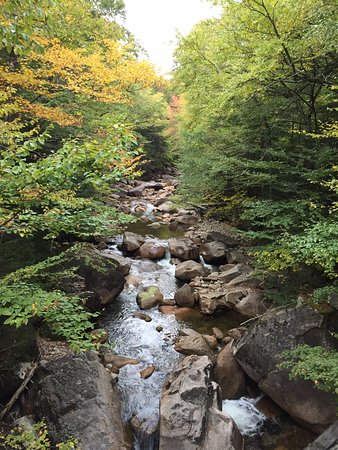 Franconia Notch State Park: Enjoy the pictures, go to Ellis Falls in stead.