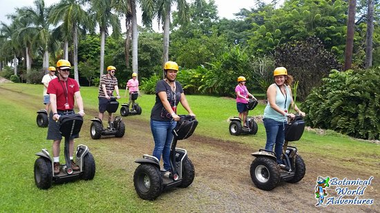 Segway Off Road at Botanical World Adventures: Our group was 6 people - perfect size!