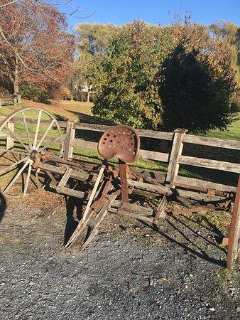 Burnside Plantation : photo2.jpg