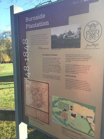 Burnside Plantation: photo3.jpg
