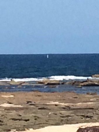 Bateau Bay, Australie : photo2.jpg