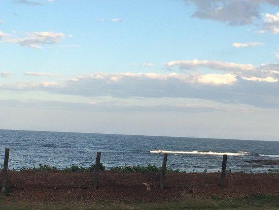 Bateau Bay, Australië: photo3.jpg