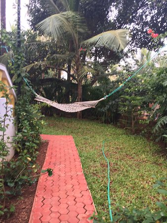 Bougainvillea Guest House Goa: And a place to snooze after a drink