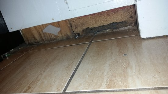 Beach House Motel: Floor - Nasty!!