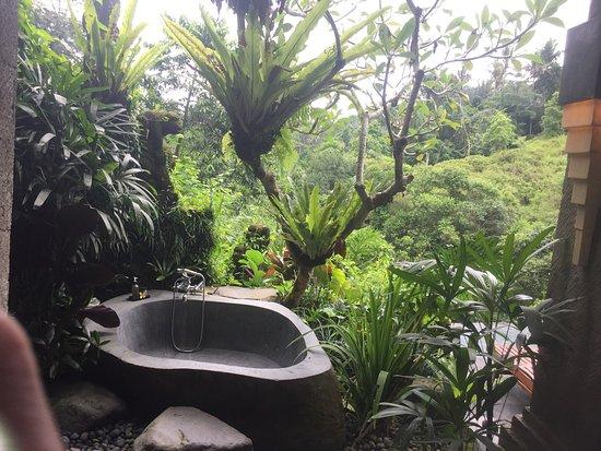 Bidadari Private Villas & Retreat: photo5.jpg