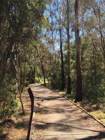 Koomba Park