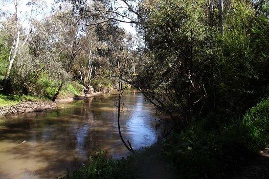 Ivanhoe, Australia: Not a bad spot