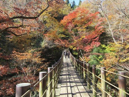 Takahagi 사진
