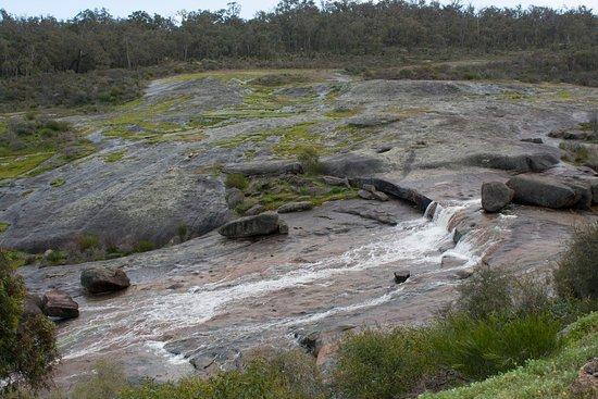 Mundaring, Αυστραλία: Nearby Hovea falls