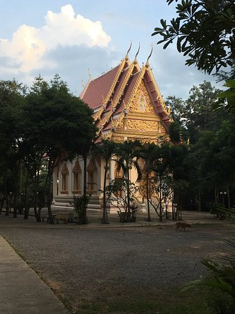 Surin, Thailandia: This is the temple in mueang thi.