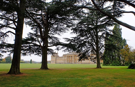 Oxfordshire, UK: Blenheim Palance, Woodstock