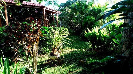 Hotel Colinas del Sol: Giardino con sullo sfondo il ristrorante
