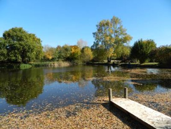 Ancinnes, Francia: Large wildlife pond