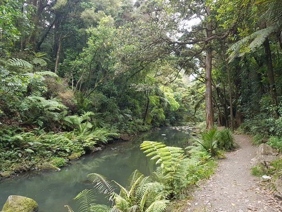 Whangarei, Selandia Baru: Walk