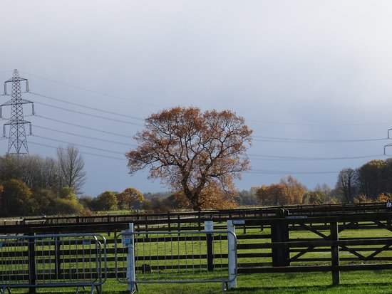 Knottingley, UK: Rural setting