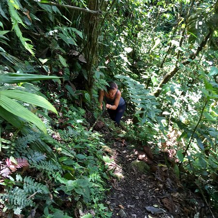 Casa Verde Raw Yoga Hiking Retreat: Fresh food, fresh air, fresher you!