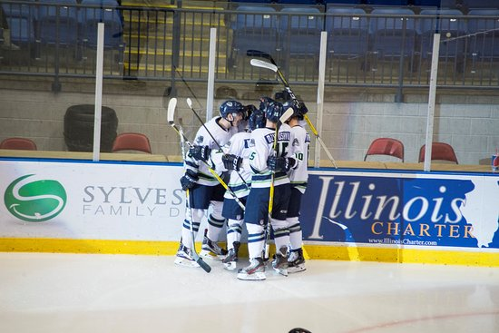 Bloomington, IL: Several Thunder players celebrate a goal at a game at the US Cellular Coliseum.