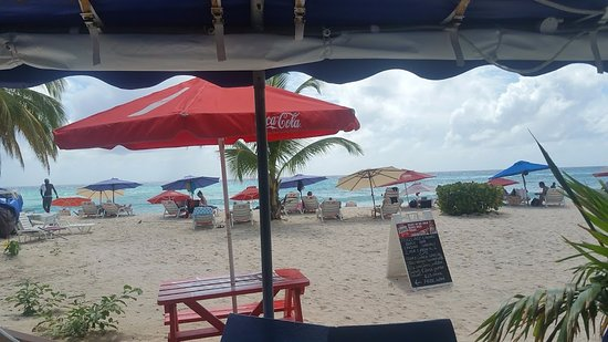 Johnny Cool Jazz & Blues Beach Bar: the view of the beach, daily specials