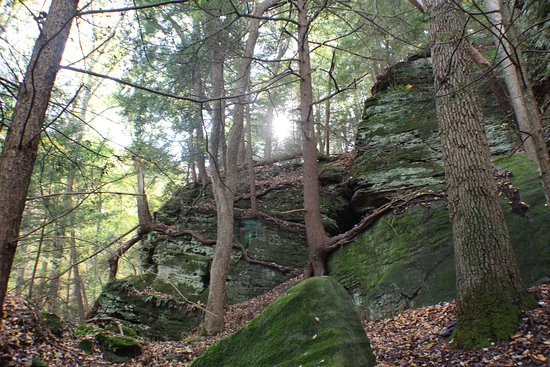 Rockbridge, OH: The views at Hocking Hills Ecotours - High Rock Adventures are amazing