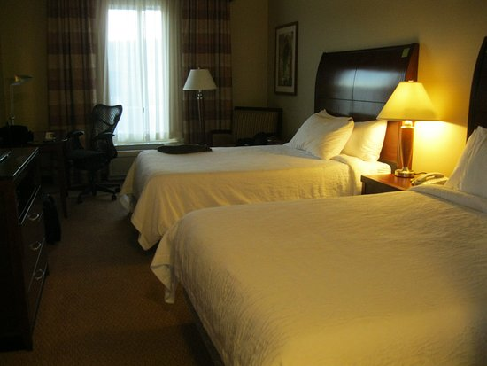 Hilton Garden Inn Great Falls Photo