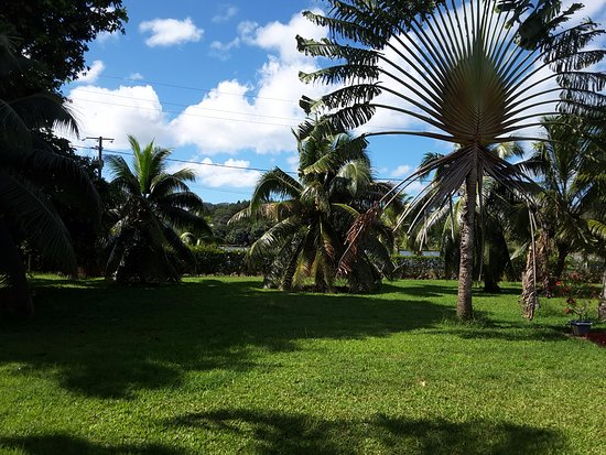 Villas Bougainville : Vue de la terrasse
