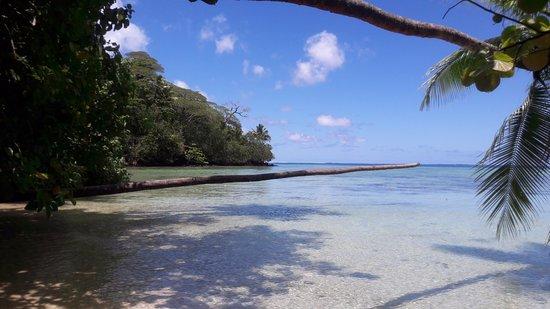 Villas Bougainville : Plage de sable blanc