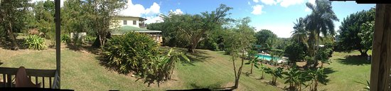 La Finca Vieques: casa nueva, pool  and new plantain trees from the family cabaña
