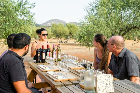 Eumelia Organic Agrotourism Farm & Guesthouse: Wine tasting & food pairing