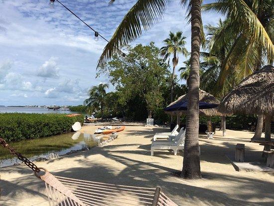 Coconut Palm Inn: photo1.jpg