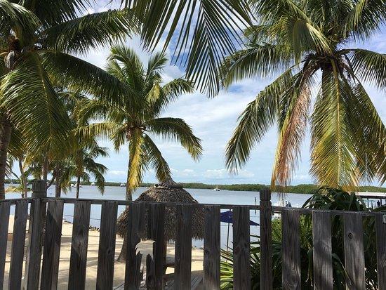Coconut Palm Inn: photo2.jpg