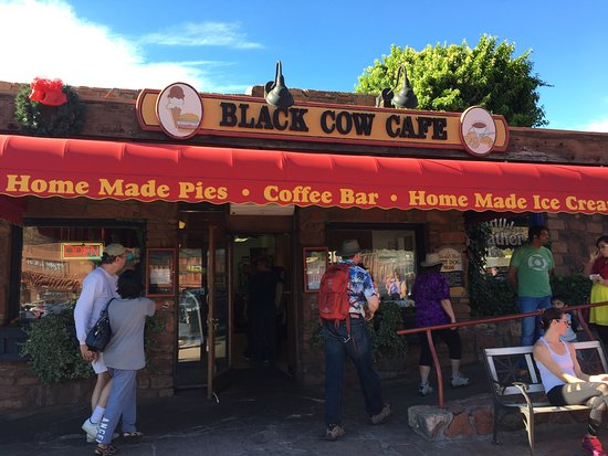 Black Cow Cafe Photo