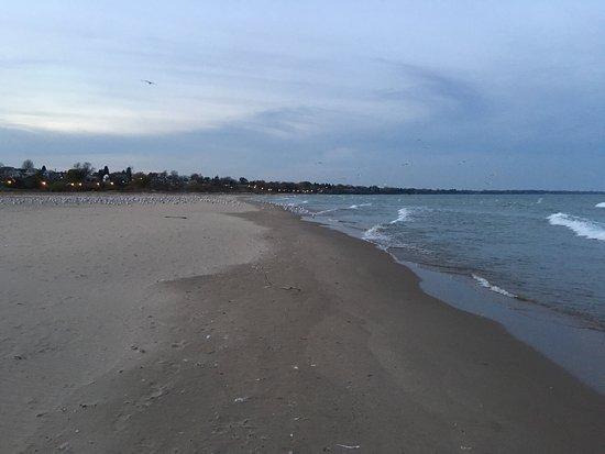 North Beach Park: photo2.jpg