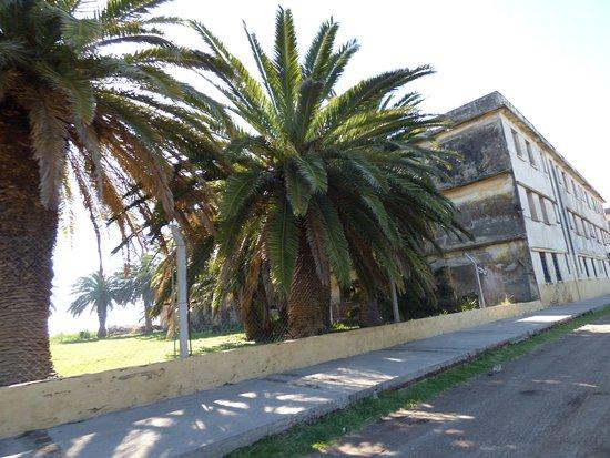 Miramar, Argentina: hotel viena tambien recomendado